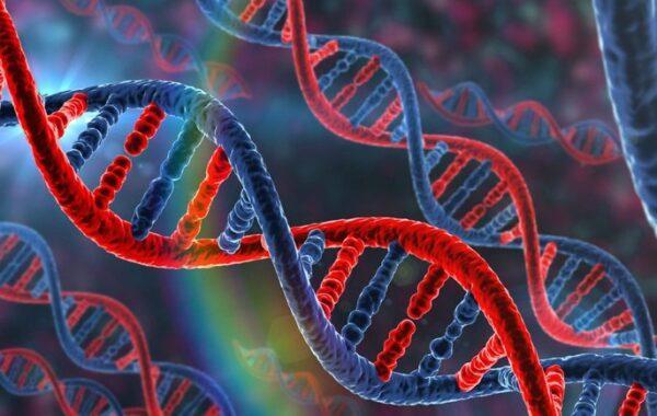 ДНК теста на еврейство